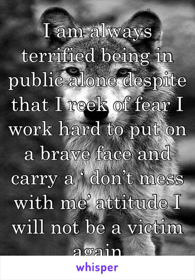 I am always terrified being in public alone despite that I reek of fear I work hard to put on a brave face and carry a ' don't mess with me' attitude I will not be a victim again