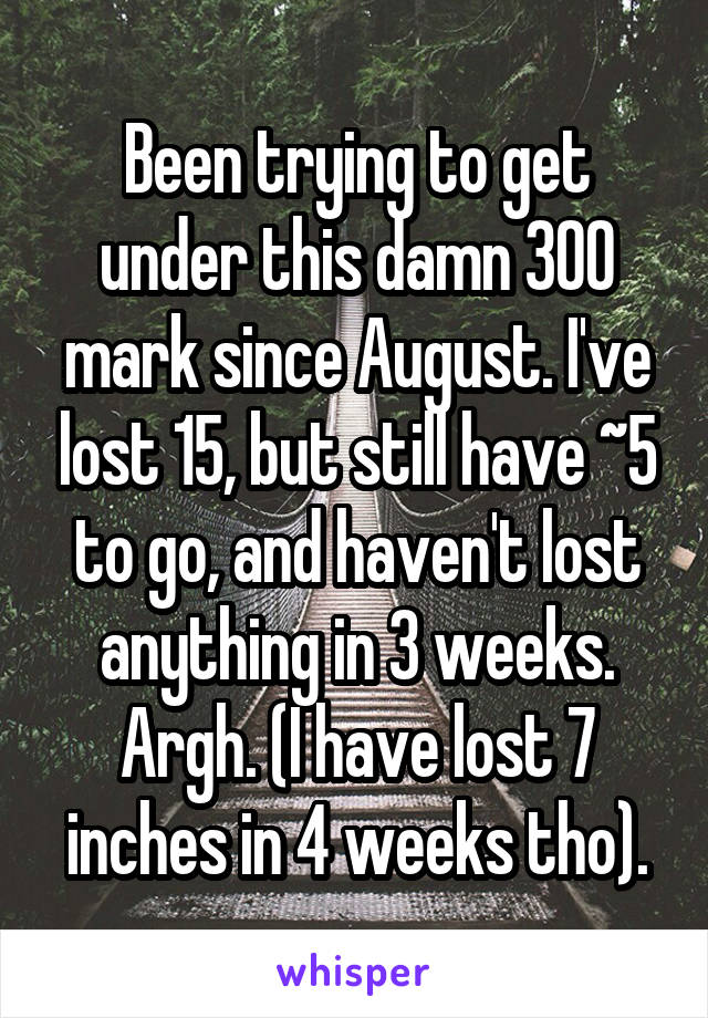 Been trying to get under this damn 300 mark since August. I've lost 15, but still have ~5 to go, and haven't lost anything in 3 weeks. Argh. (I have lost 7 inches in 4 weeks tho).