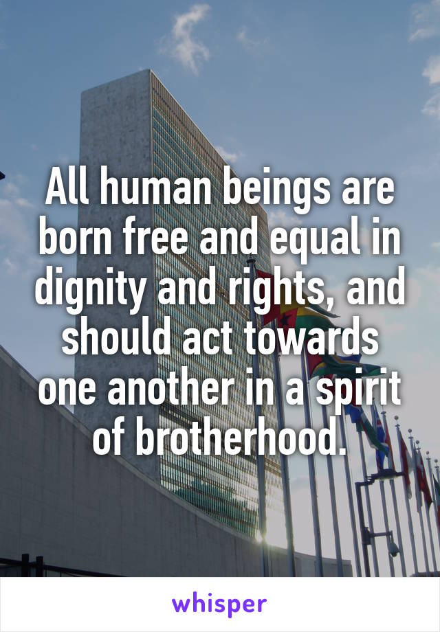 All human beings are born free and equal in dignity and rights, and should act towards one another in a spirit of brotherhood.