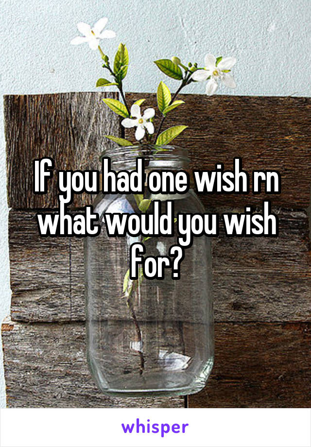 If you had one wish rn what would you wish for?