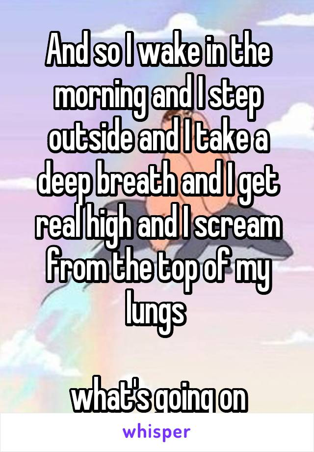 And so I wake in the morning and I step outside and I take a deep breath and I get real high and I scream from the top of my lungs   what's going on