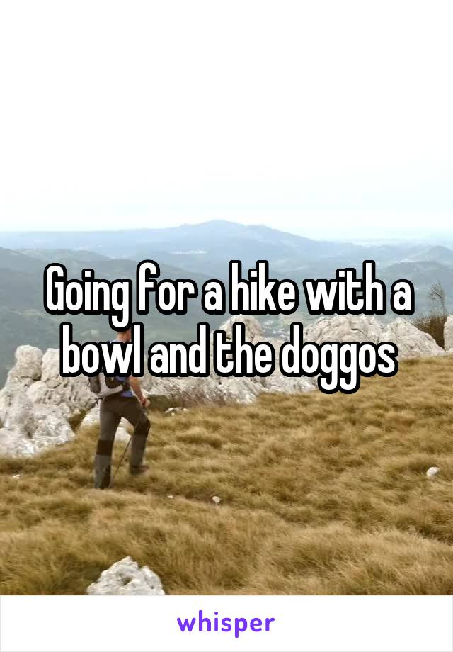 Going for a hike with a bowl and the doggos