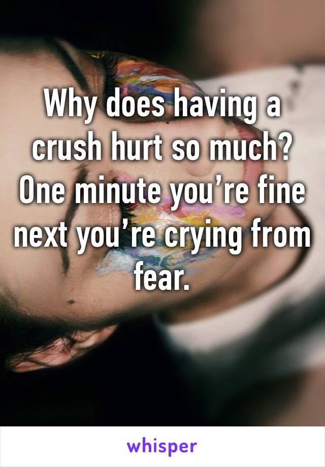 Why does having a crush hurt so much? One minute you're fine next you're crying from fear.