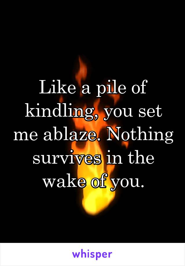 Like a pile of kindling, you set me ablaze. Nothing survives in the wake of you.