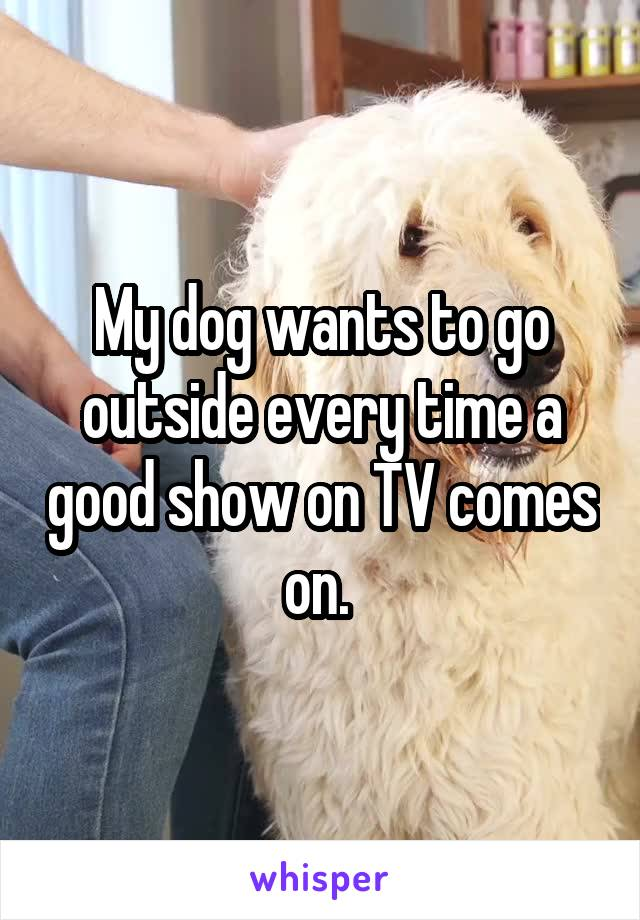 My dog wants to go outside every time a good show on TV comes on.