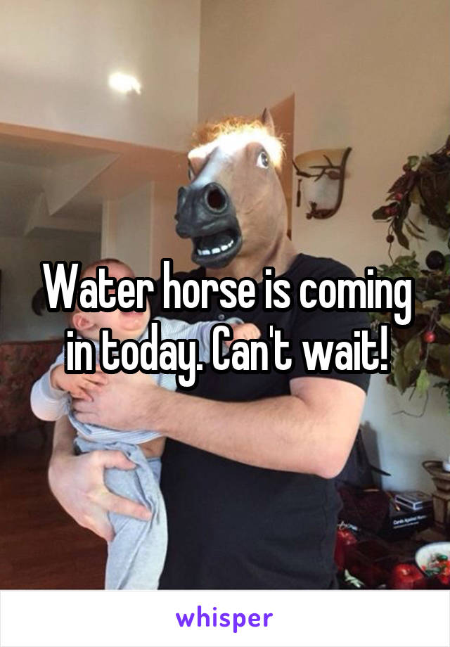 Water horse is coming in today. Can't wait!