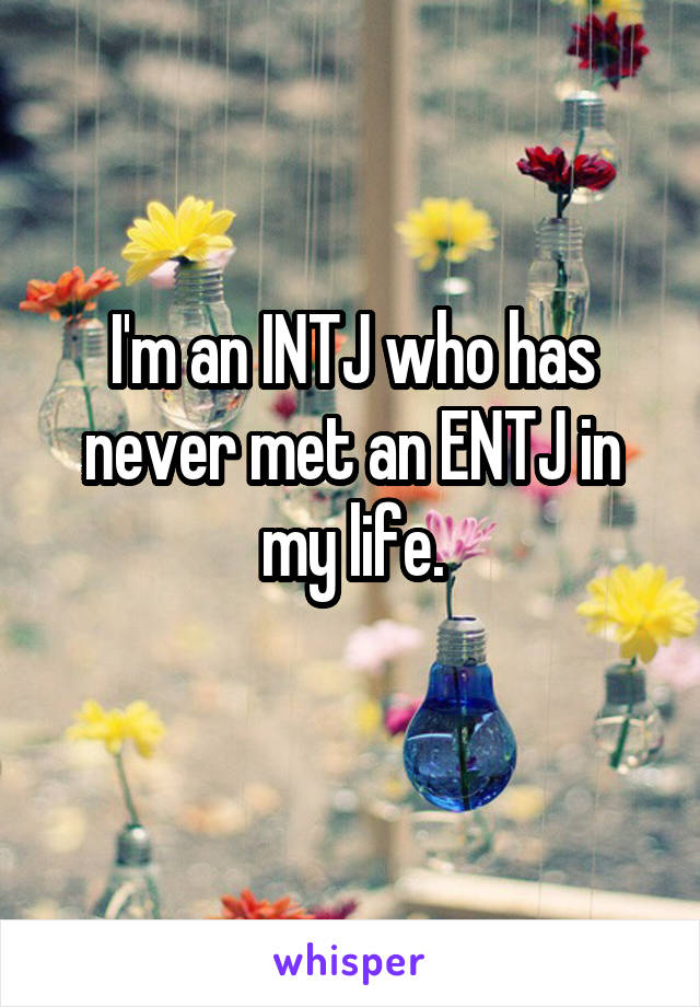 I'm an INTJ who has never met an ENTJ in my life.