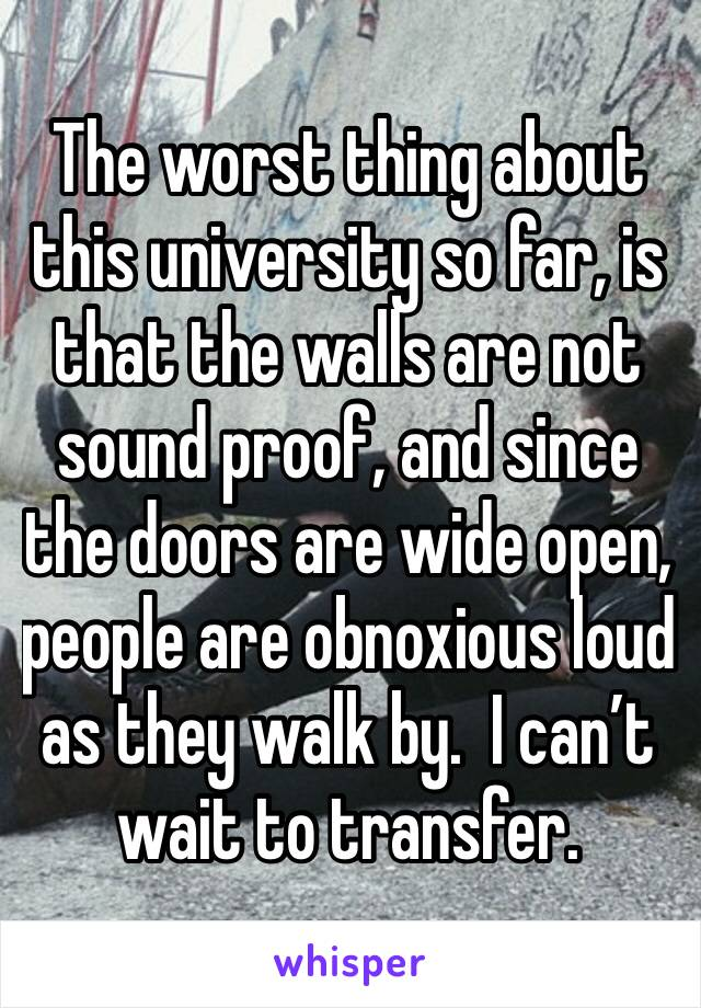 The worst thing about this university so far, is that the walls are not sound proof, and since the doors are wide open, people are obnoxious loud as they walk by.  I can't wait to transfer.