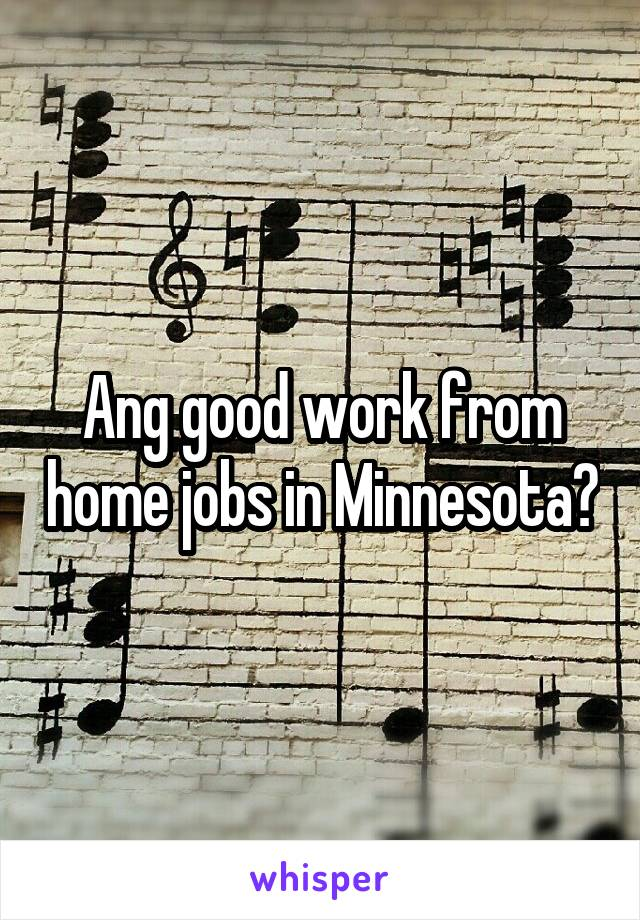 Ang good work from home jobs in Minnesota?