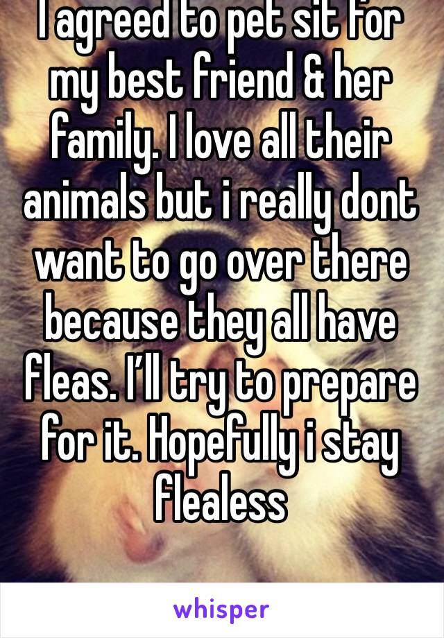 I agreed to pet sit for my best friend & her family. I love all their animals but i really dont want to go over there because they all have fleas. I'll try to prepare for it. Hopefully i stay flealess