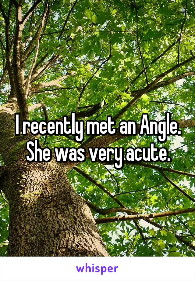 I recently met an Angle. She was very acute.