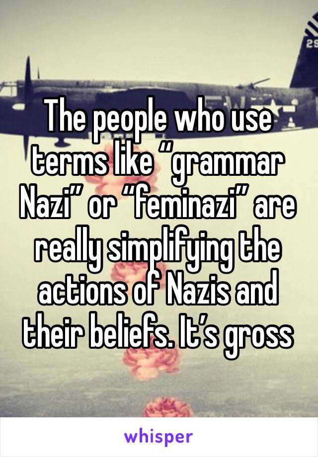 "The people who use terms like ""grammar Nazi"" or ""feminazi"" are really simplifying the actions of Nazis and their beliefs. It's gross"