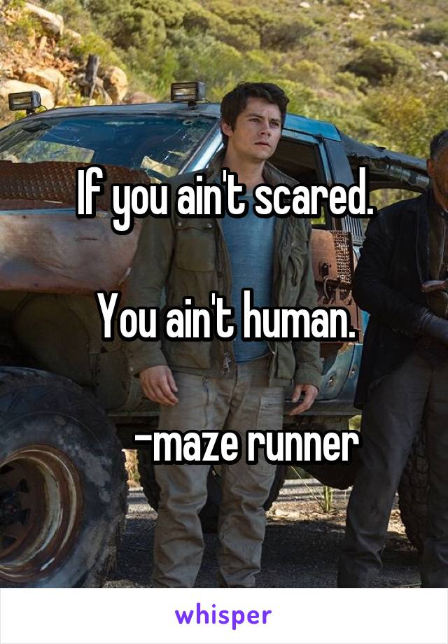 If you ain't scared.  You ain't human.       -maze runner