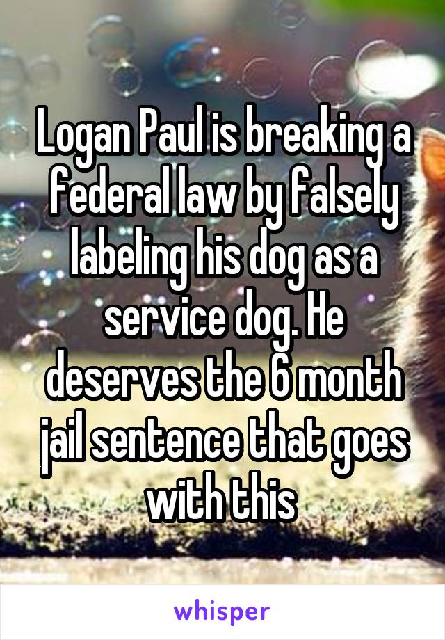Logan Paul is breaking a federal law by falsely labeling his dog as a service dog. He deserves the 6 month jail sentence that goes with this