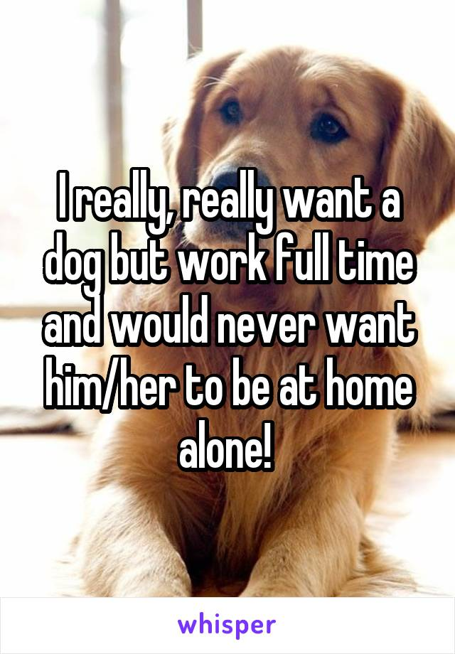 I really, really want a dog but work full time and would never want him/her to be at home alone!
