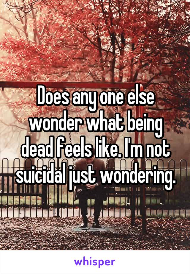Does any one else wonder what being dead feels like. I'm not suicidal just wondering.