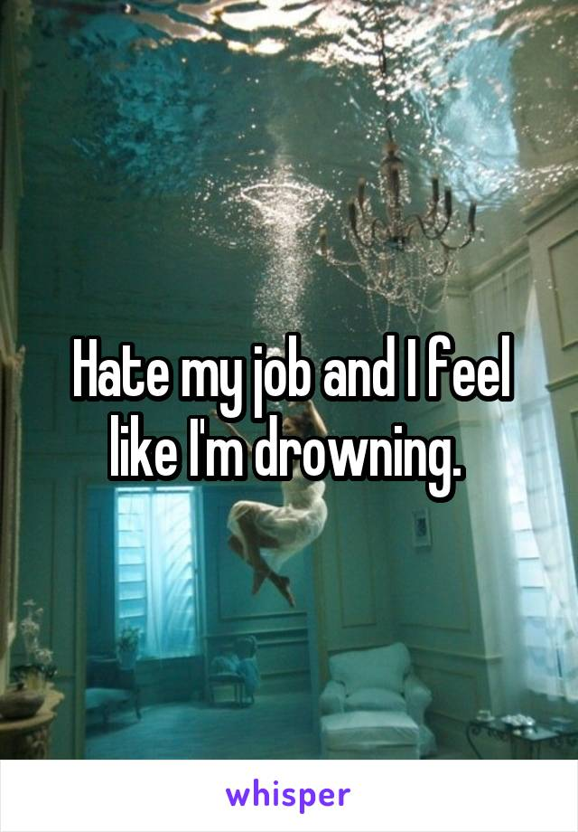 Hate my job and I feel like I'm drowning.