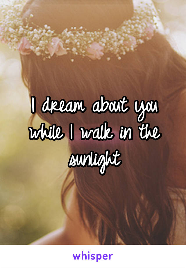 I dream about you while I walk in the sunlight