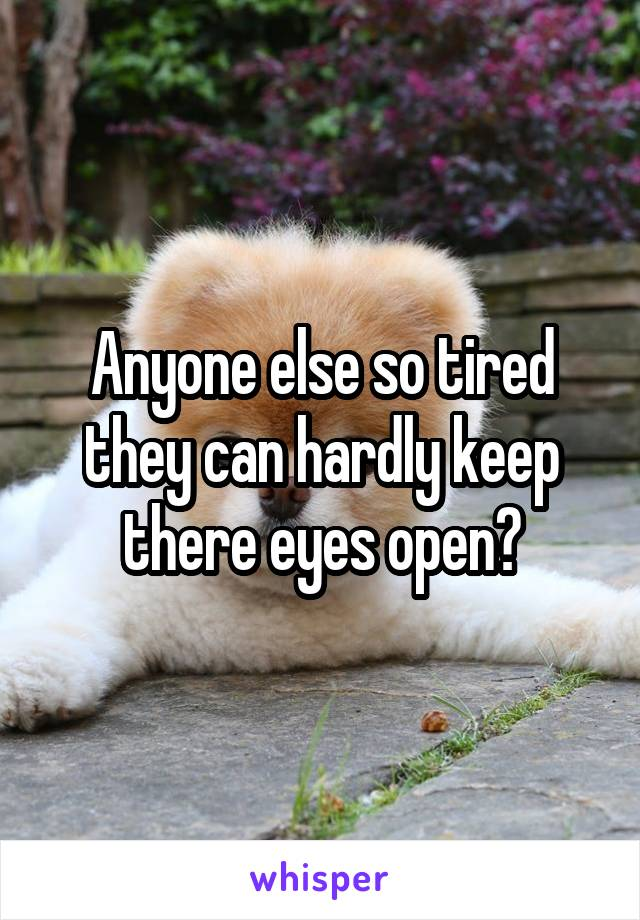 Anyone else so tired they can hardly keep there eyes open?