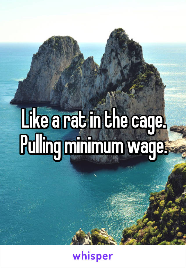 Like a rat in the cage. Pulling minimum wage.