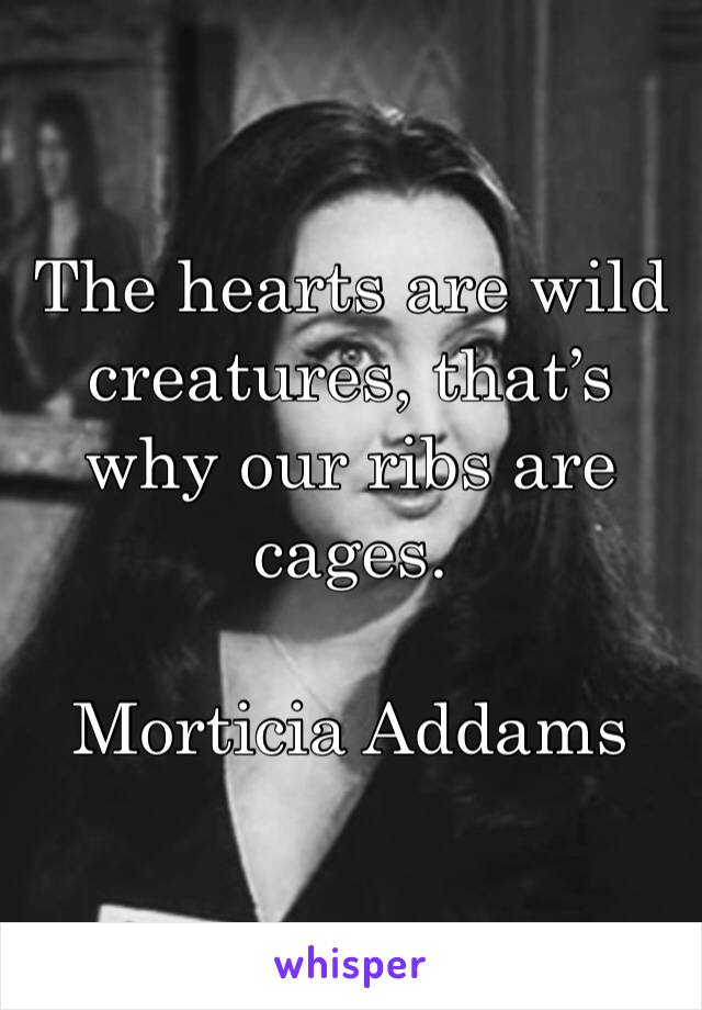 The hearts are wild creatures, that's why our ribs are cages.  Morticia Addams