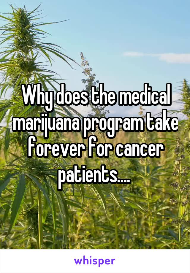 Why does the medical marijuana program take forever for cancer patients....
