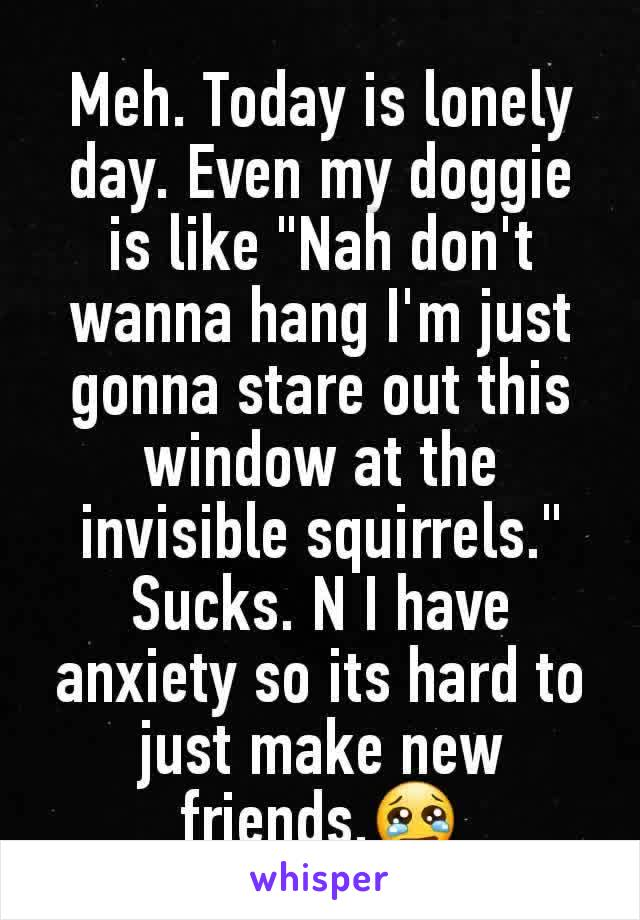 """Meh. Today is lonely day. Even my doggie is like """"Nah don't wanna hang I'm just gonna stare out this window at the invisible squirrels."""" Sucks. N I have anxiety so its hard to just make new friends.😢"""