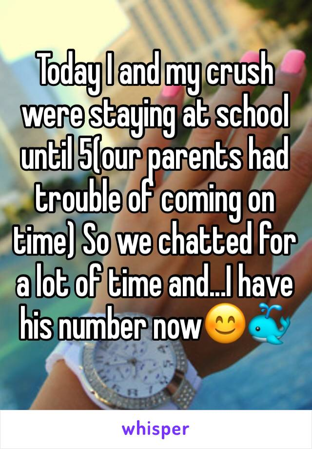 Today I and my crush were staying at school until 5(our parents had trouble of coming on time) So we chatted for a lot of time and...I have his number now😊🐳