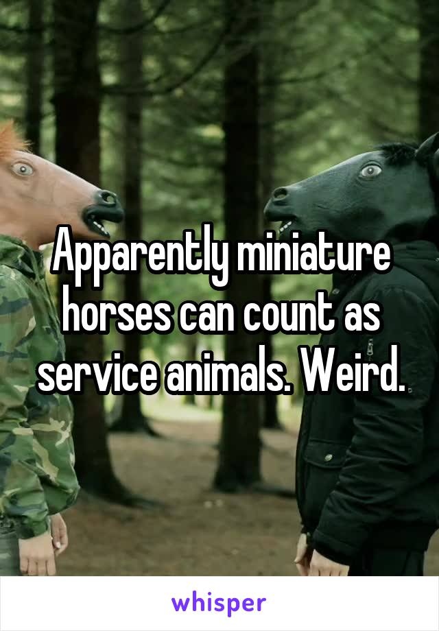 Apparently miniature horses can count as service animals. Weird.