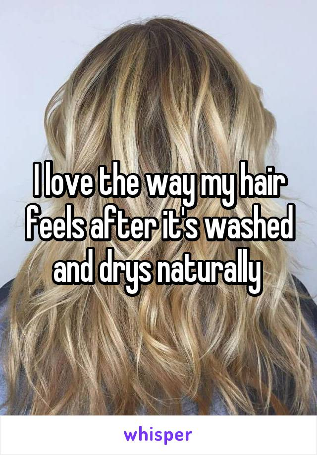 I love the way my hair feels after it's washed and drys naturally