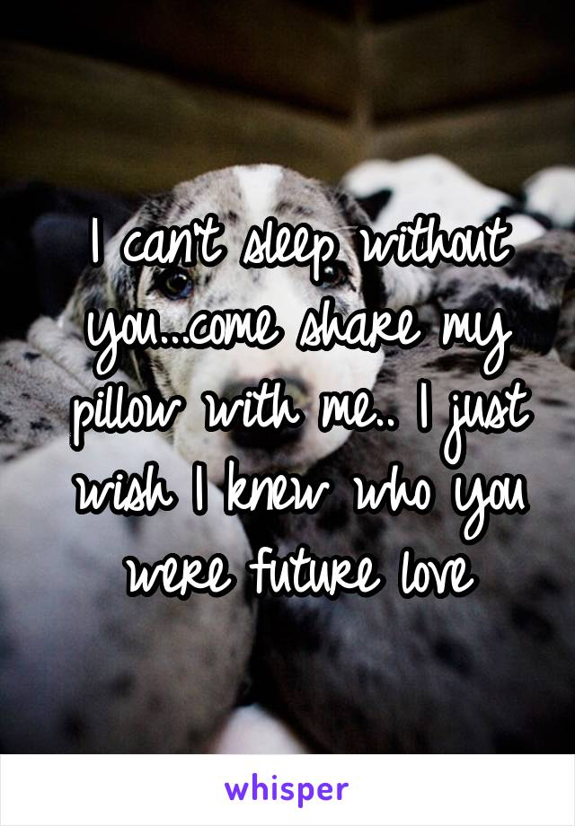 I can't sleep without you...come share my pillow with me.. I just wish I knew who you were future love