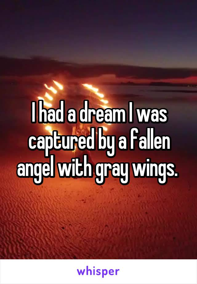 I had a dream I was captured by a fallen angel with gray wings.