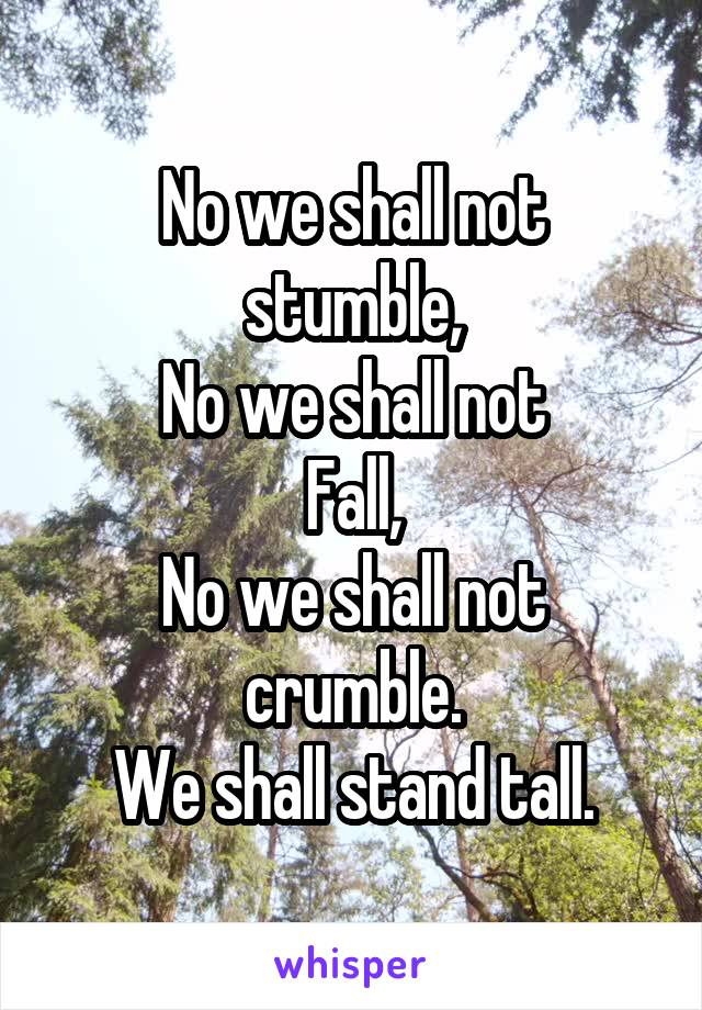 No we shall not stumble, No we shall not Fall, No we shall not crumble. We shall stand tall.