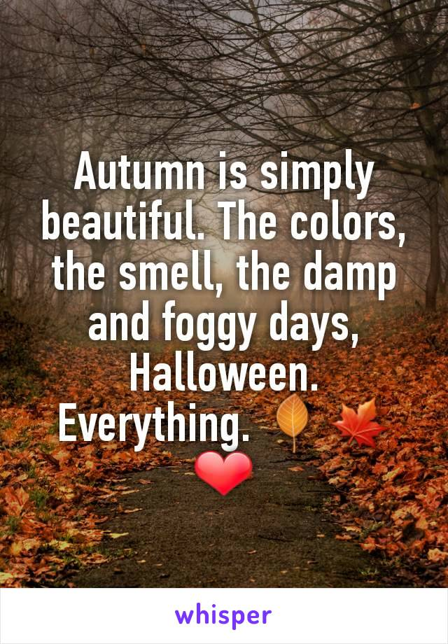 Autumn is simply beautiful. The colors, the smell, the damp and foggy days, Halloween. Everything. 🍂🍁❤️
