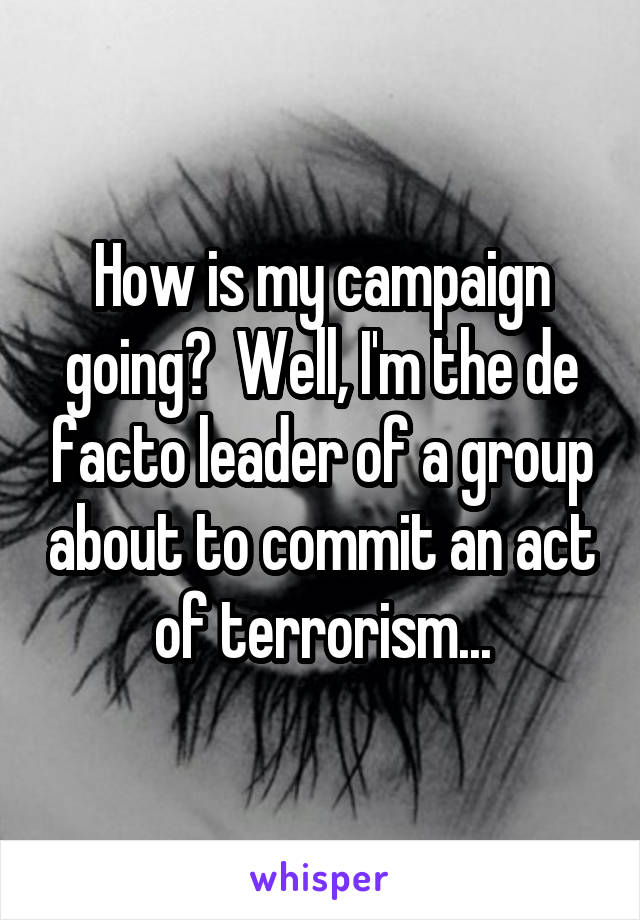 How is my campaign going?  Well, I'm the de facto leader of a group about to commit an act of terrorism...