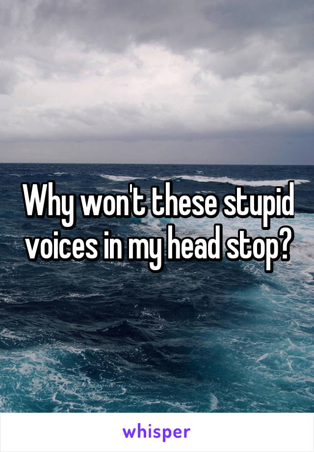 Why won't these stupid voices in my head stop?