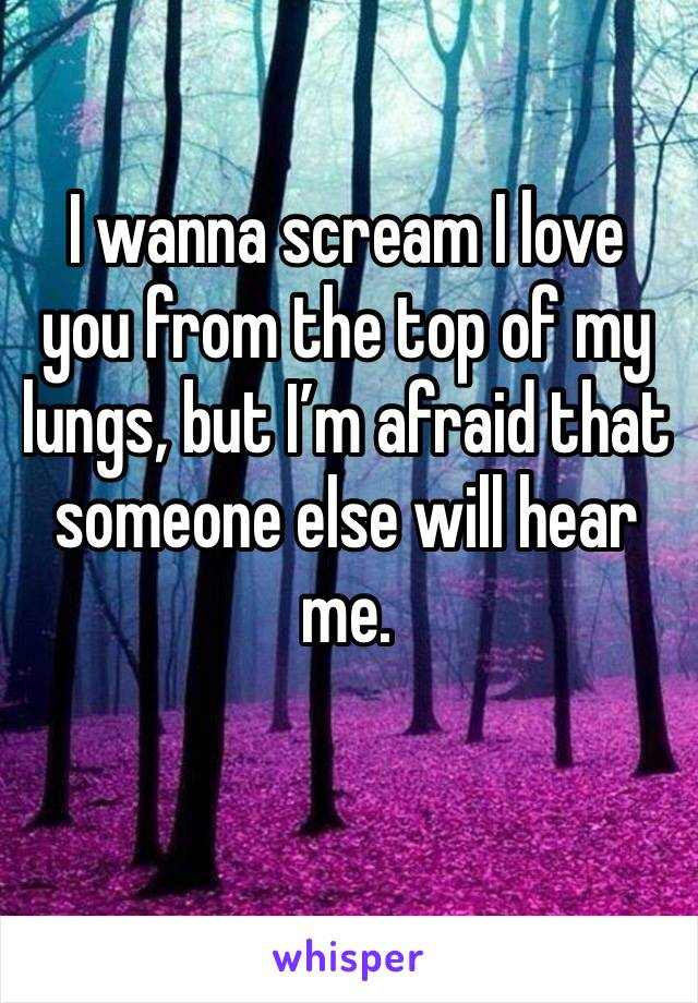 I wanna scream I love you from the top of my lungs, but I'm afraid that someone else will hear me.