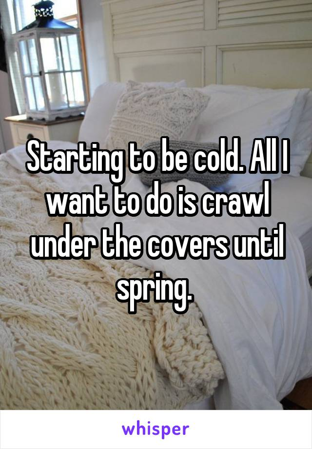 Starting to be cold. All I want to do is crawl under the covers until spring.