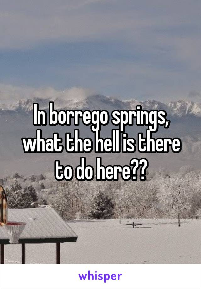 In borrego springs, what the hell is there to do here??
