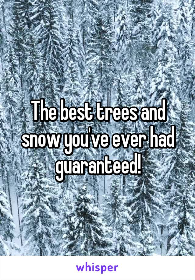 The best trees and snow you've ever had guaranteed!
