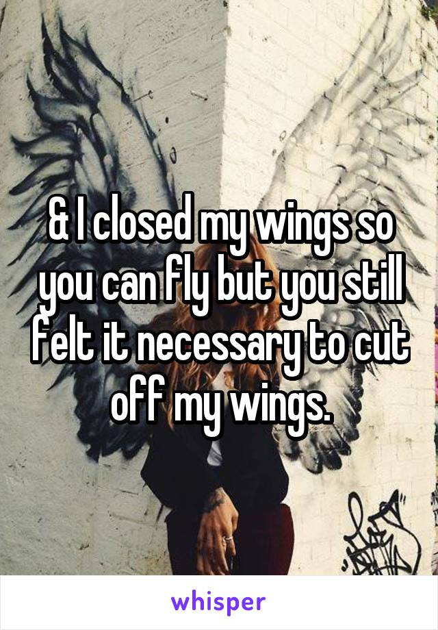 & I closed my wings so you can fly but you still felt it necessary to cut off my wings.