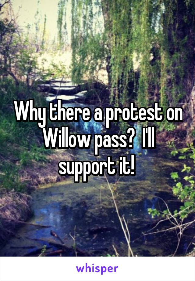Why there a protest on Willow pass?  I'll support it!