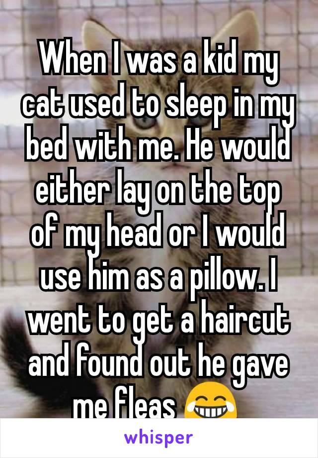 When I was a kid my cat used to sleep in my bed with me. He would either lay on the top of my head or I would use him as a pillow. I went to get a haircut and found out he gave me fleas 😂