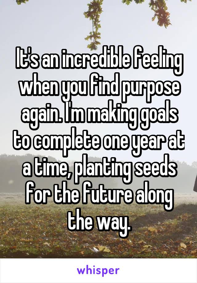 It's an incredible feeling when you find purpose again. I'm making goals to complete one year at a time, planting seeds for the future along the way.