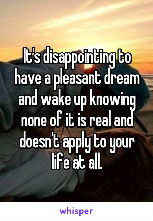 It's disappointing to have a pleasant dream and wake up knowing none of it is real and doesn't apply to your life at all.