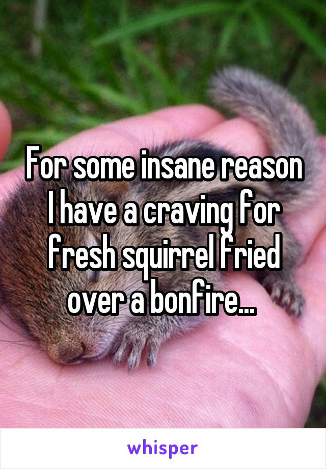 For some insane reason I have a craving for fresh squirrel fried over a bonfire...