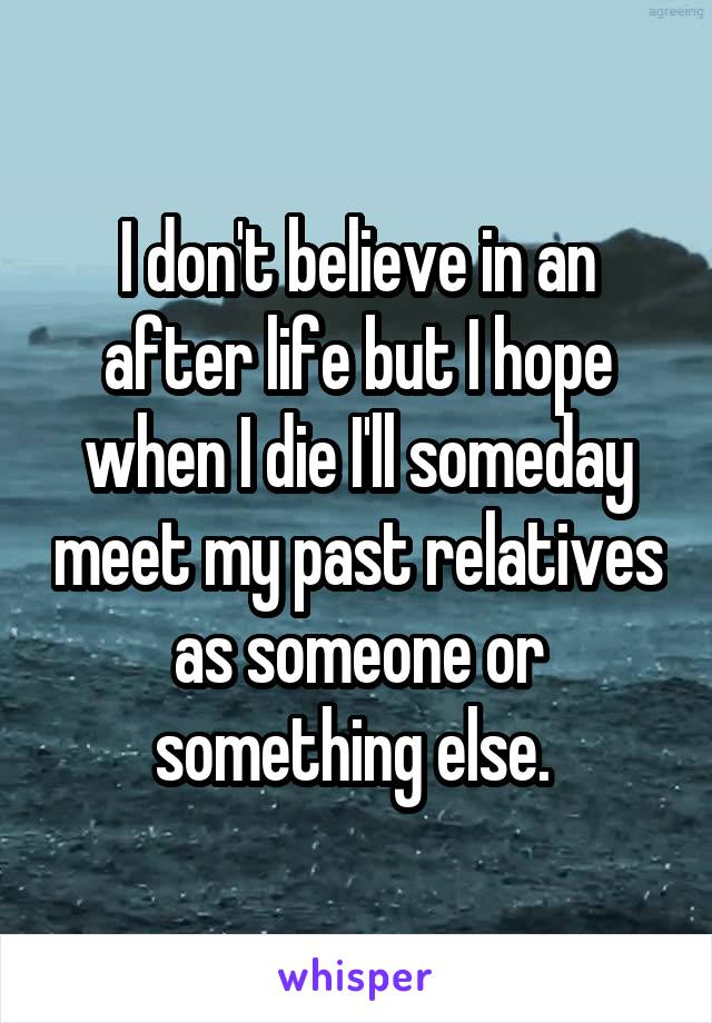 I don't believe in an after life but I hope when I die I'll someday meet my past relatives as someone or something else.