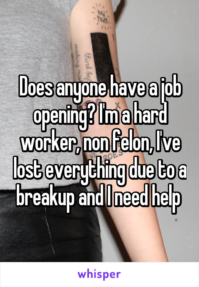 Does anyone have a job opening? I'm a hard worker, non felon, I've lost everything due to a breakup and I need help