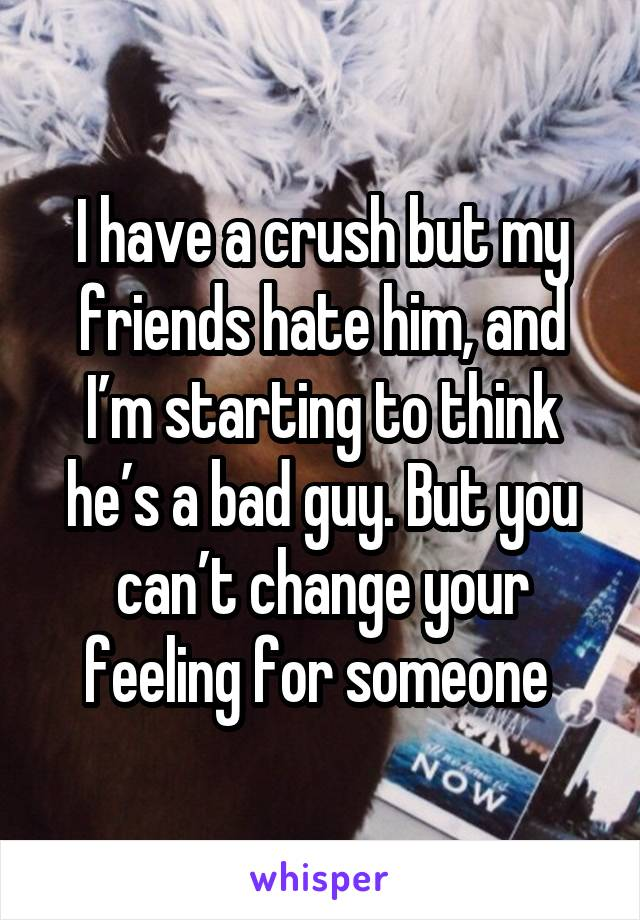 I have a crush but my friends hate him, and I'm starting to think he's a bad guy. But you can't change your feeling for someone