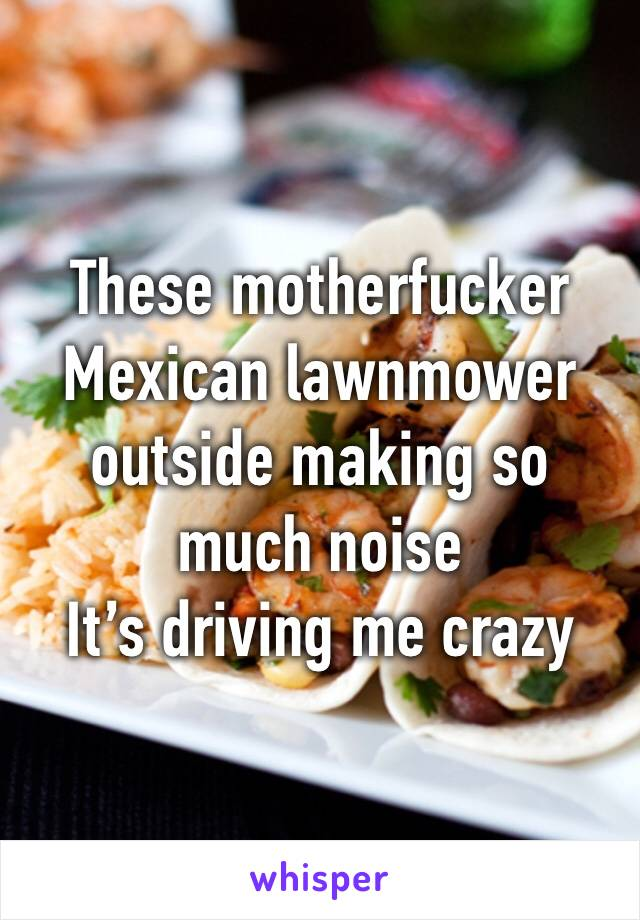 These motherfucker Mexican lawnmower outside making so much noise  It's driving me crazy